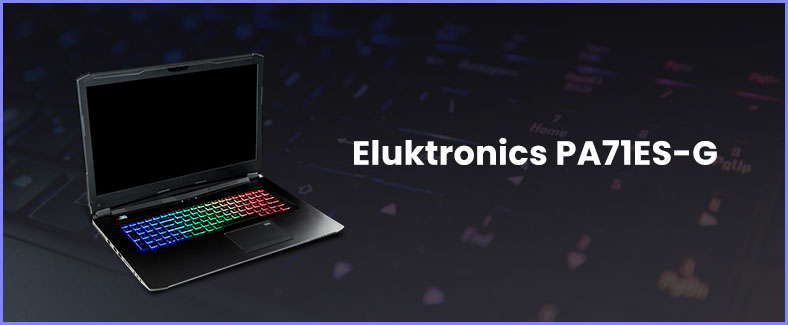 Eluktronics PA71ES-G review